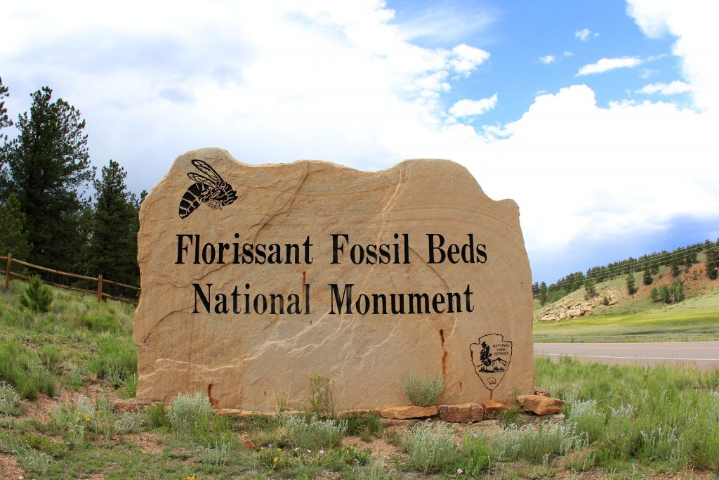 florissant fossil beds