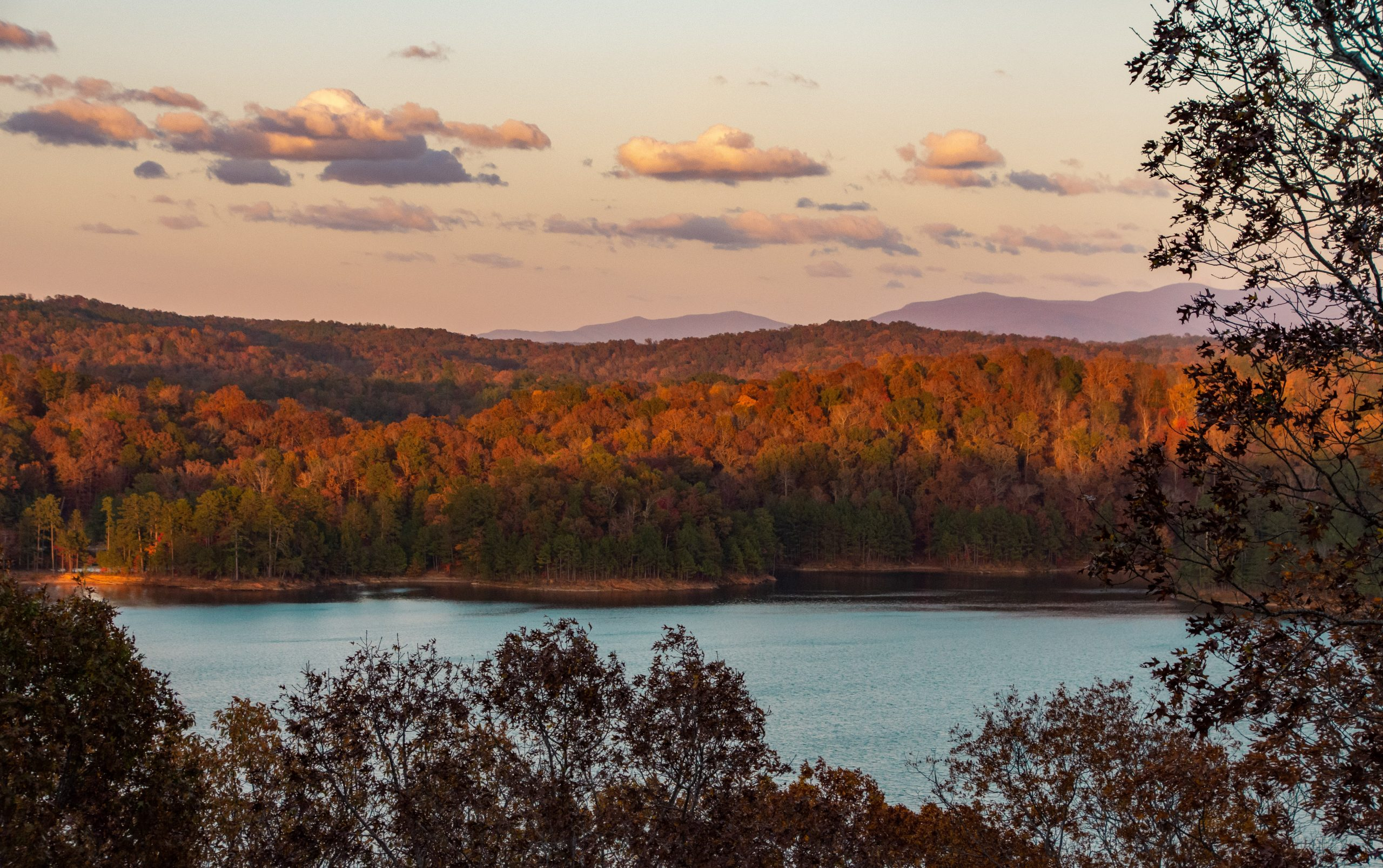 Picture of Lake with trees in background in Georgia